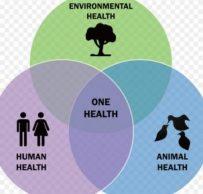 one health  e